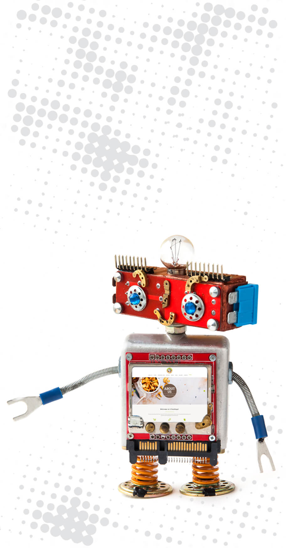 robot with web image on chest
